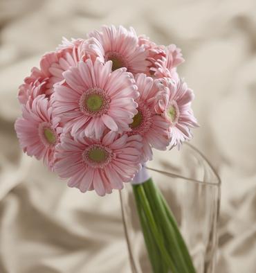 Pink gerbera wedding bouquet
