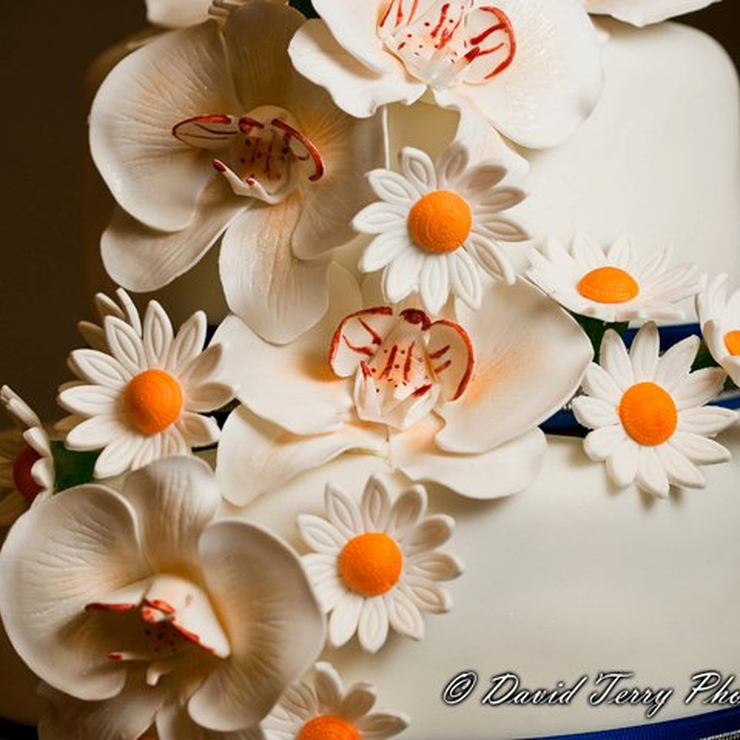 Carol's Wedding Cake