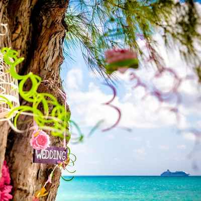 Beach green photo session decor