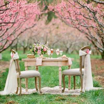 Spring pink photo session decor