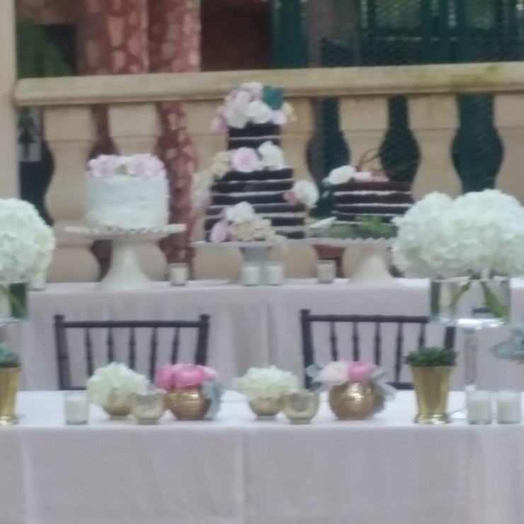Shatsey and Albertos Wedding Cakes