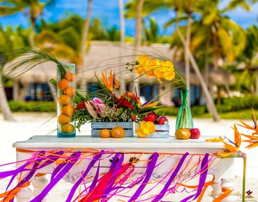 Beach purple photo session decor