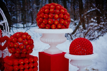 Fruit winter photo session decor