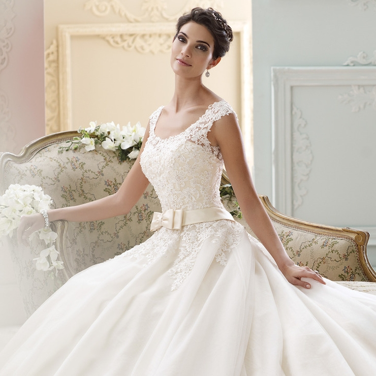 David Tutera Gowns
