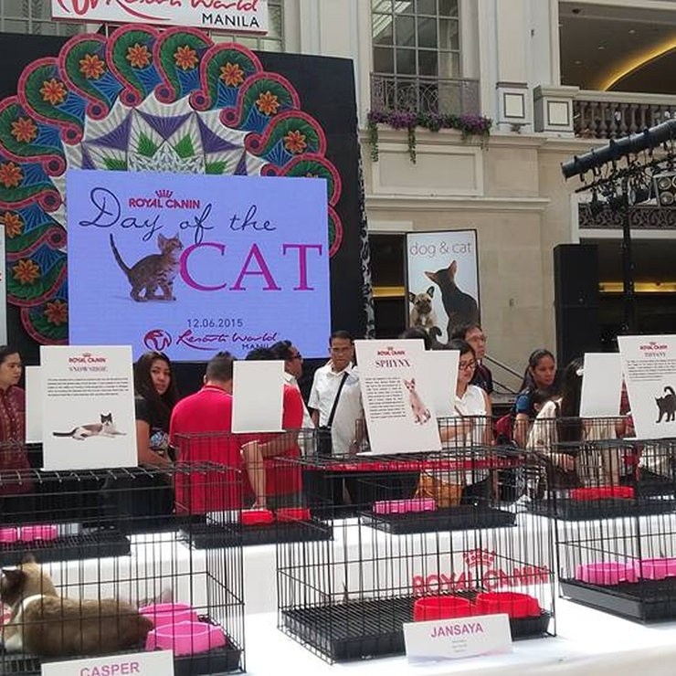 RoyalCanin Event.