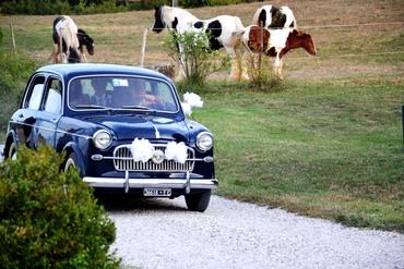Black wedding transport