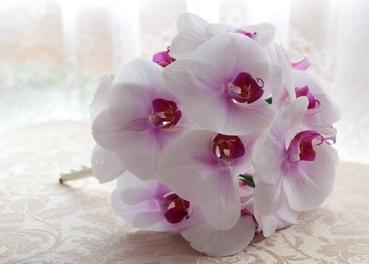 White orchid wedding bouquet