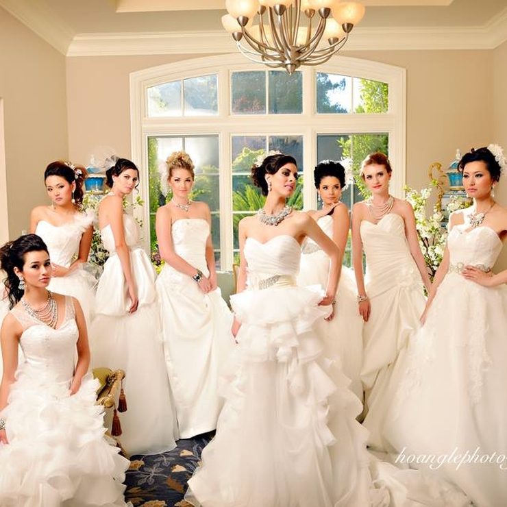 Bridal Gowns Studio