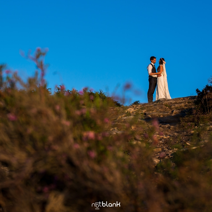 N & S Trash The Dress