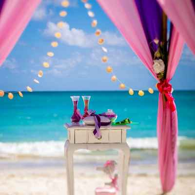 Overseas pink wedding photo session decor