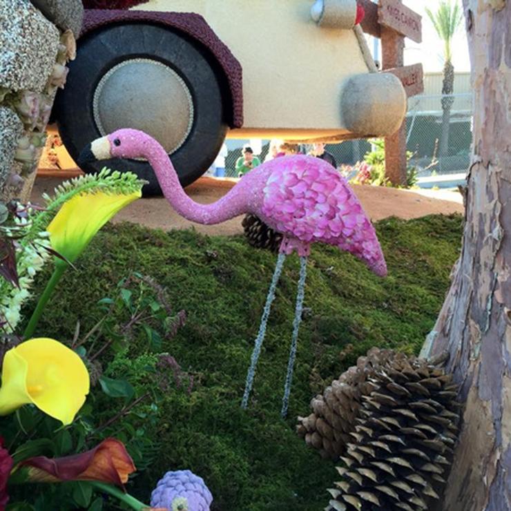 Rose Parade Petals Flyboy Naturals