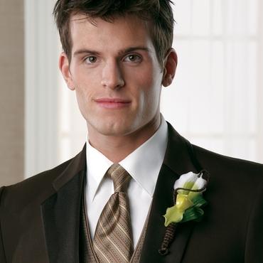 Brown groom style