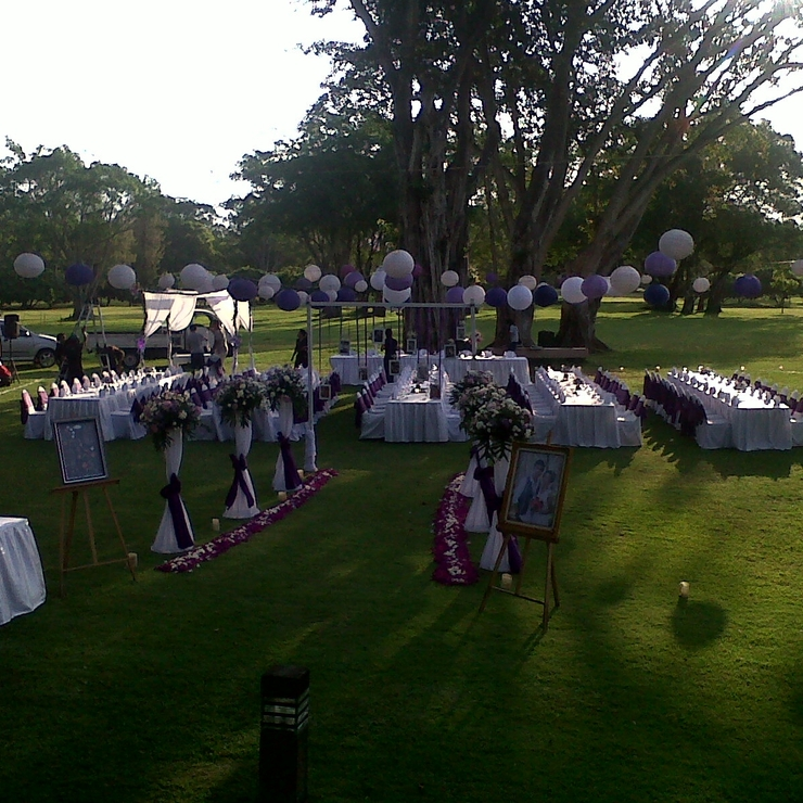 Wedding & Food Pic.