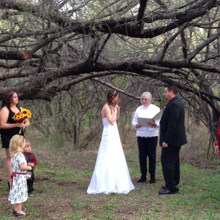 Under the Tree Wedding!
