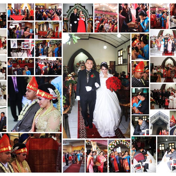 Wedding januar and Novi
