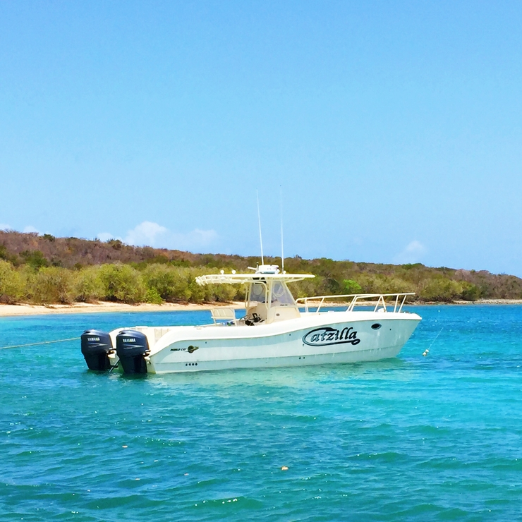 Private Day Charters in the US Virgin Islands