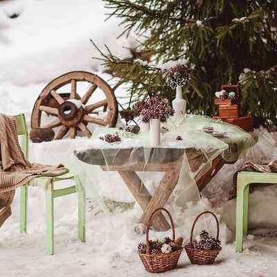 Winter green photo session decor