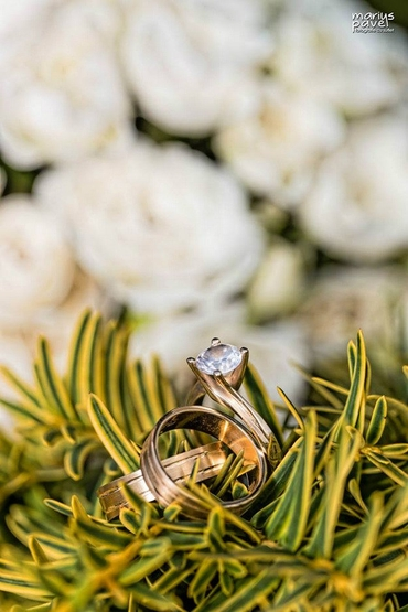 Summer gold wedding rings