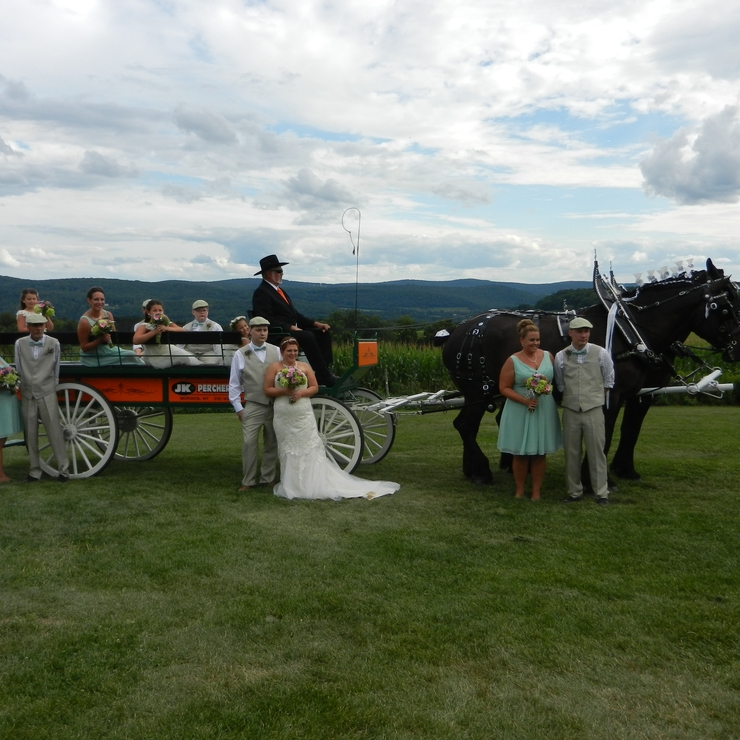 Horse Drawn Carriage for Weddings