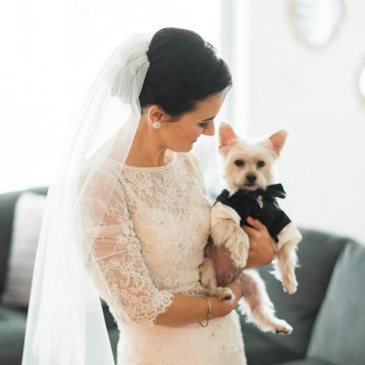 The Sokolic Wedding