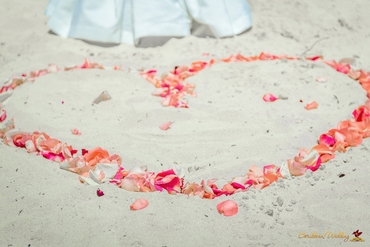Beach pink photo session decor