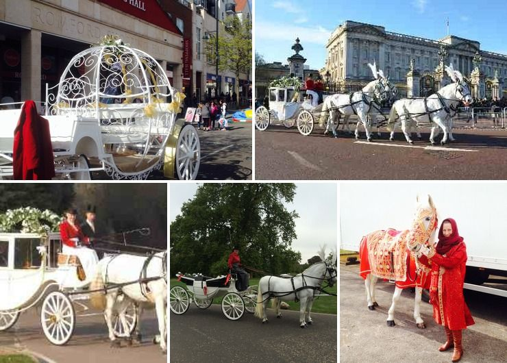 Carlton carriages