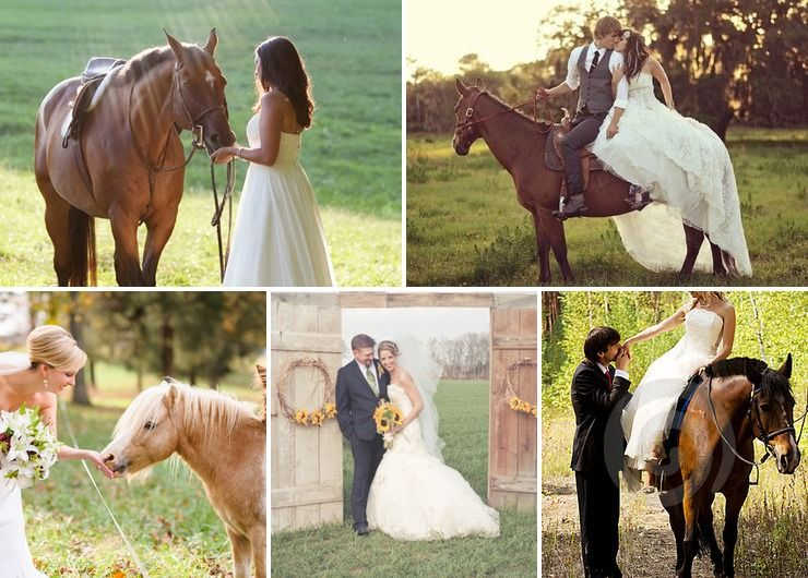 Silver Creek Stables Wedding Venue