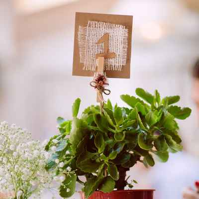 Rustic green wedding signs