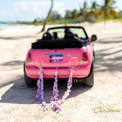 Overseas pink wedding transport
