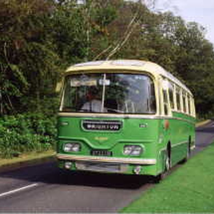 Vintage coaches & buses