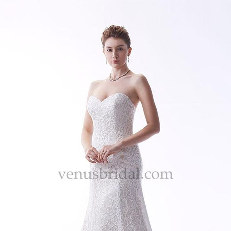 Informal Wedding and Bridesmaids
