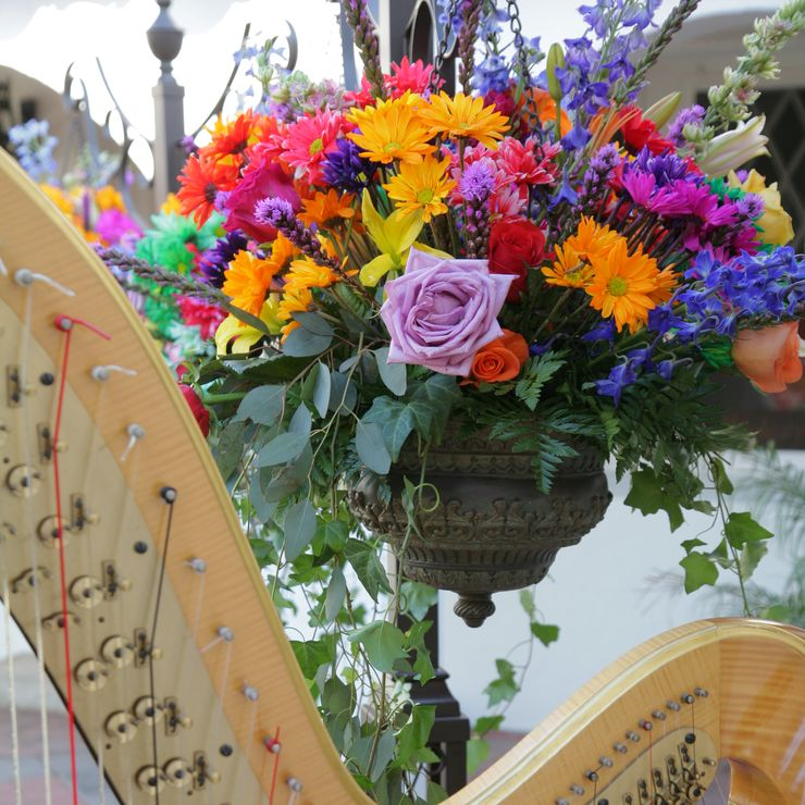 Harp at a wedding