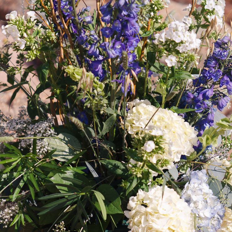 Wildflowers and hydrangeas