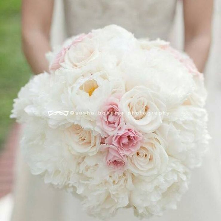 Various events and weddings