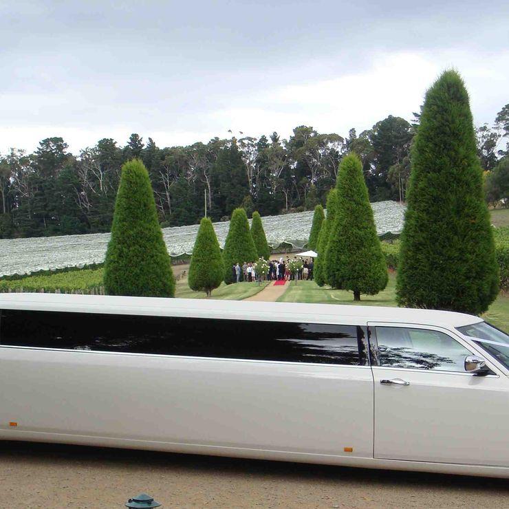 11 Passenger Chrysler Limousines