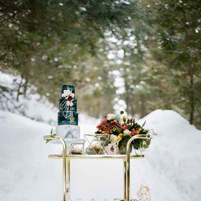 Winter outdoor wedding photo session decor