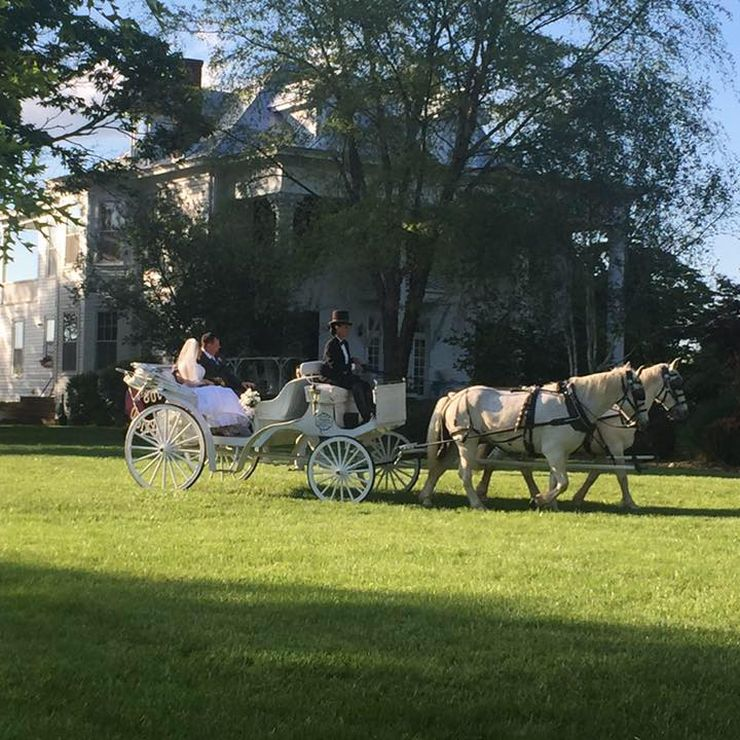 Wedding carriage pictures